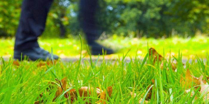 man-walking-park